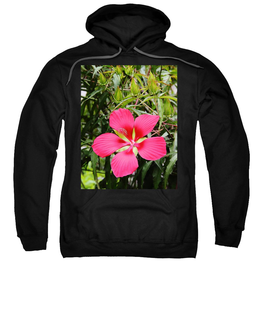 Flower Sweatshirt featuring the photograph Red Hibiscus by Allen Nice-Webb