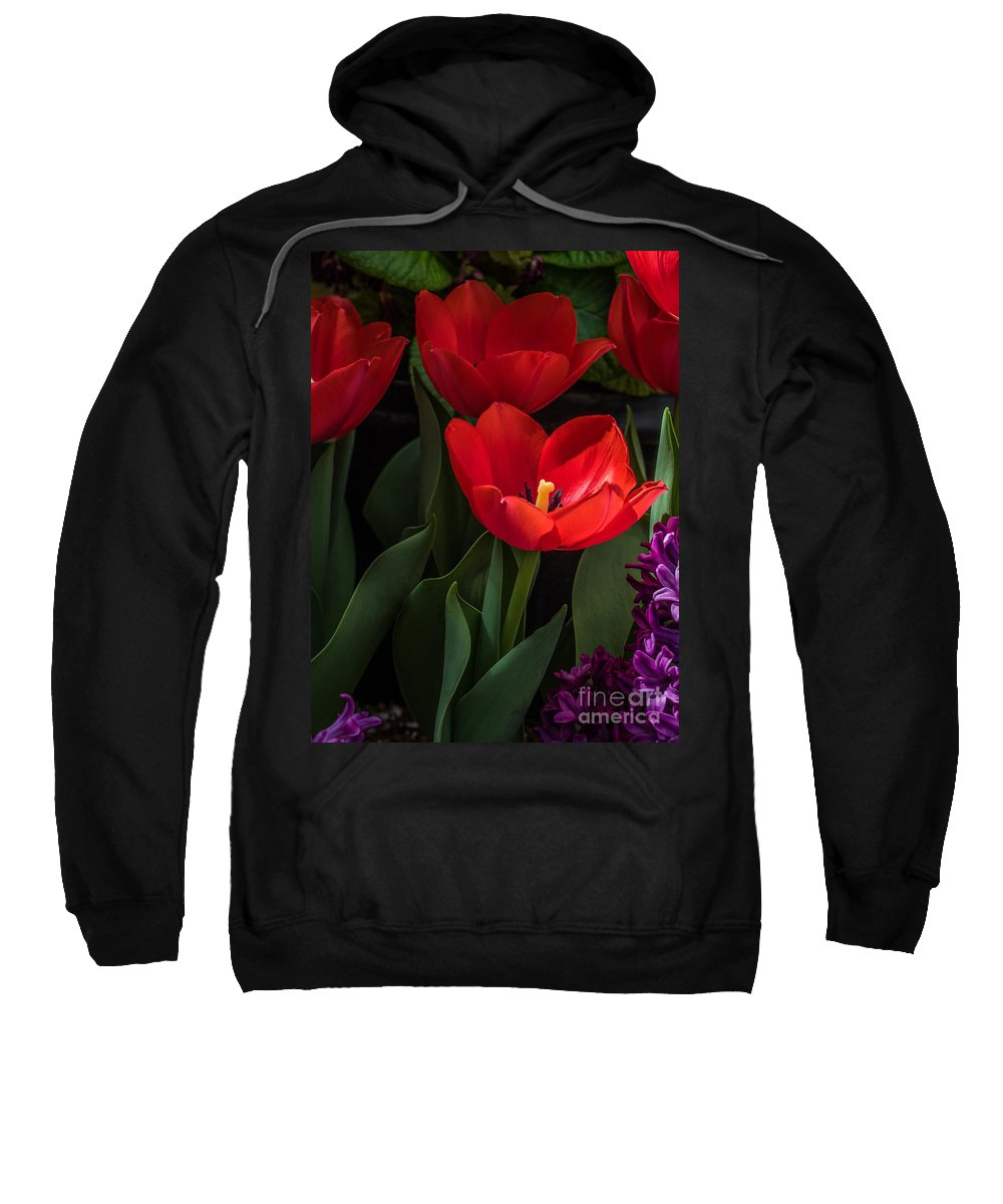 Tulip Sweatshirt featuring the photograph Red Tulip by Darleen Stry