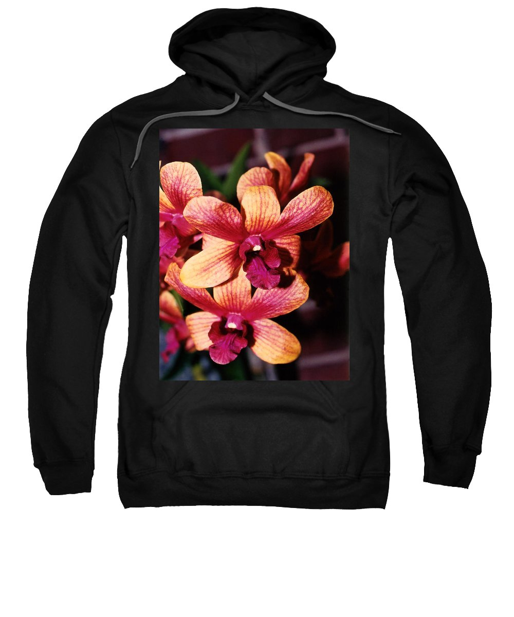 Orchid Sweatshirt featuring the photograph Red Twins by Susanne Van Hulst