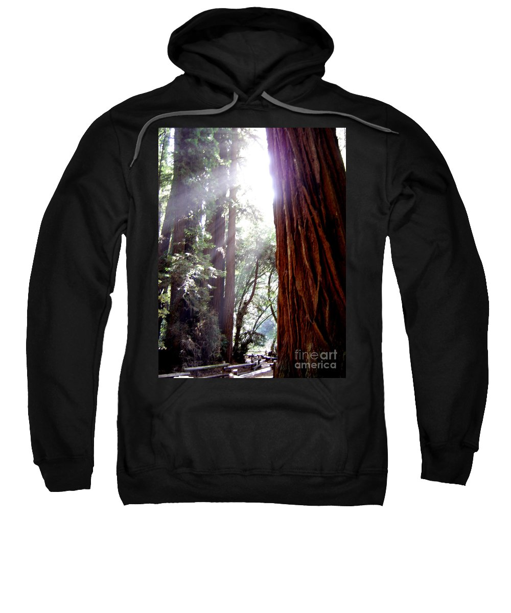Redwoods Sweatshirt featuring the photograph Redwood Sunlight by Mary Rogers