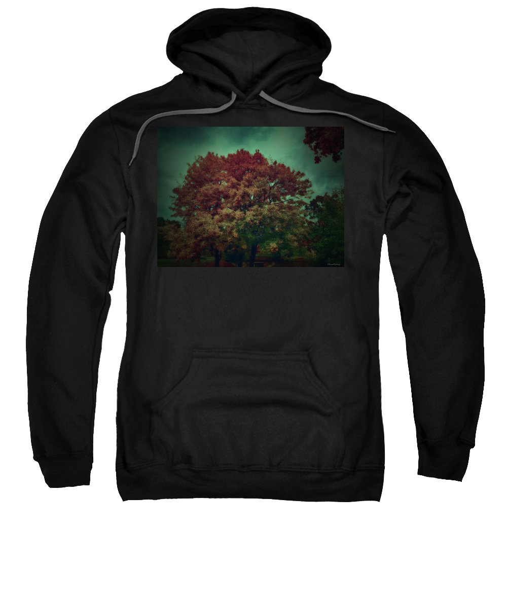 Reed Sweatshirt featuring the photograph Reed Tree by Ramon Martinez