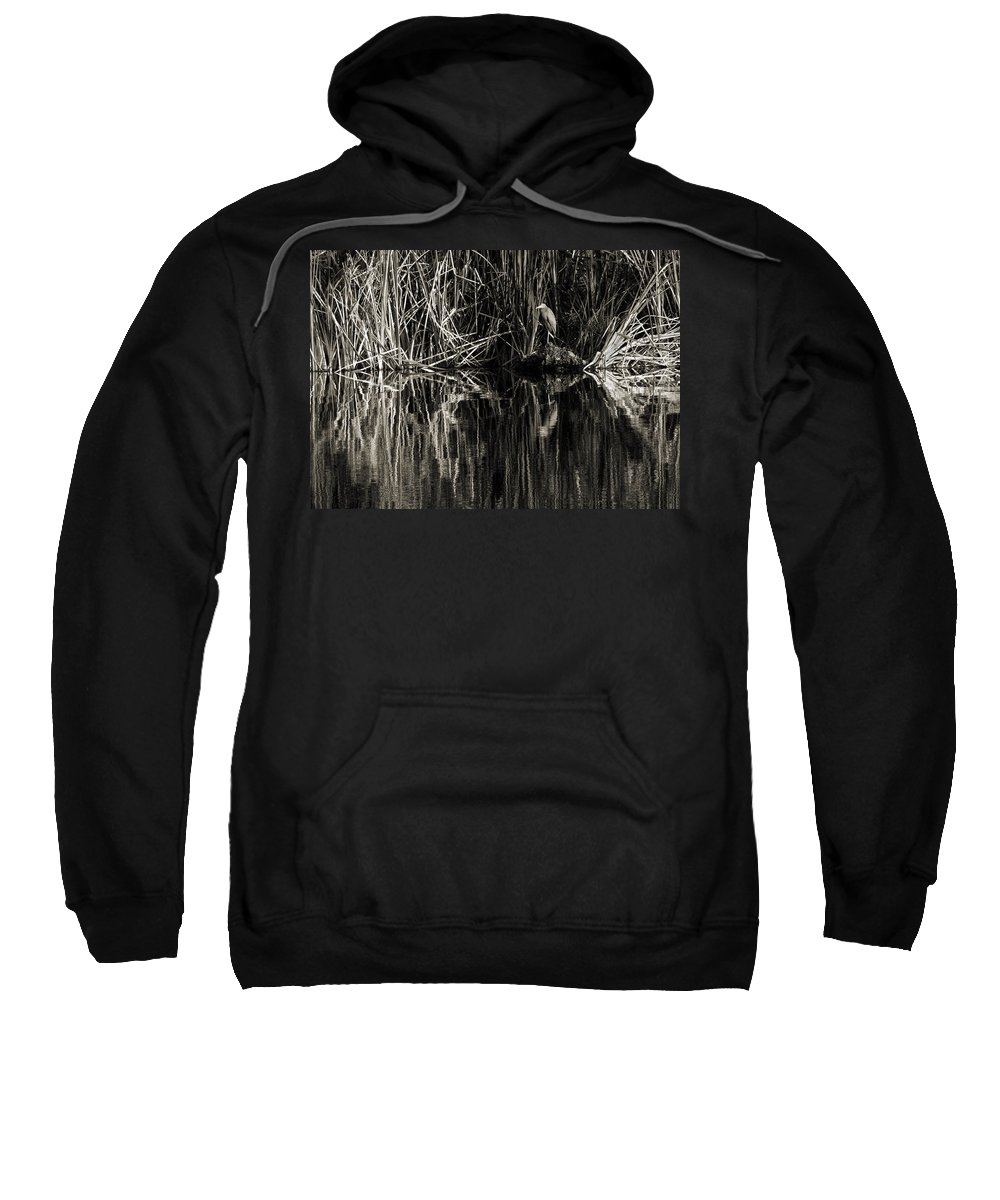 Little Blue Heron Sweatshirt featuring the photograph Reeds And Heron by Steven Sparks