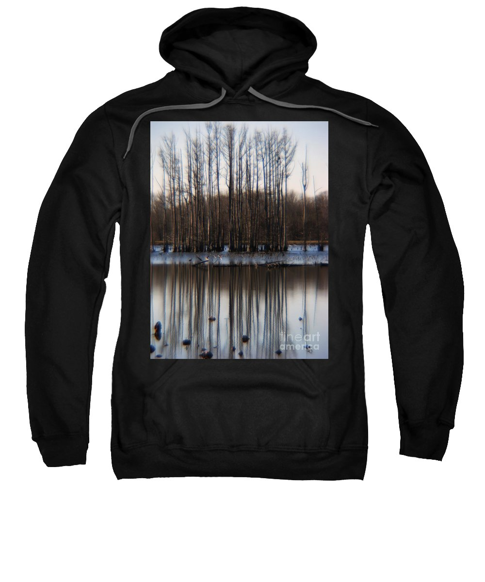 Nature Sweatshirt featuring the photograph Reflection by Amanda Barcon