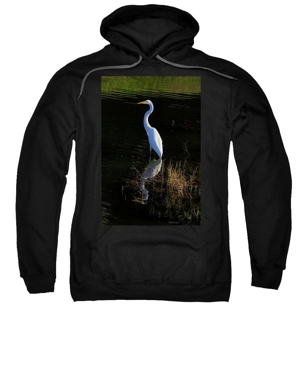 Giant Egret Sweatshirt featuring the photograph Reflections Of Beauty by Deborah Benoit