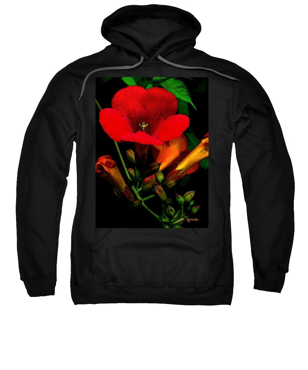 Flowers Sweatshirt featuring the painting Renaissance by RC DeWinter