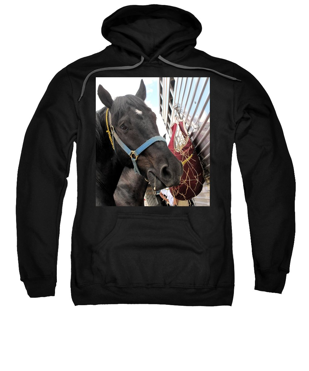 Horse Sweatshirt featuring the photograph Reward For A Job Well Done by Ian MacDonald