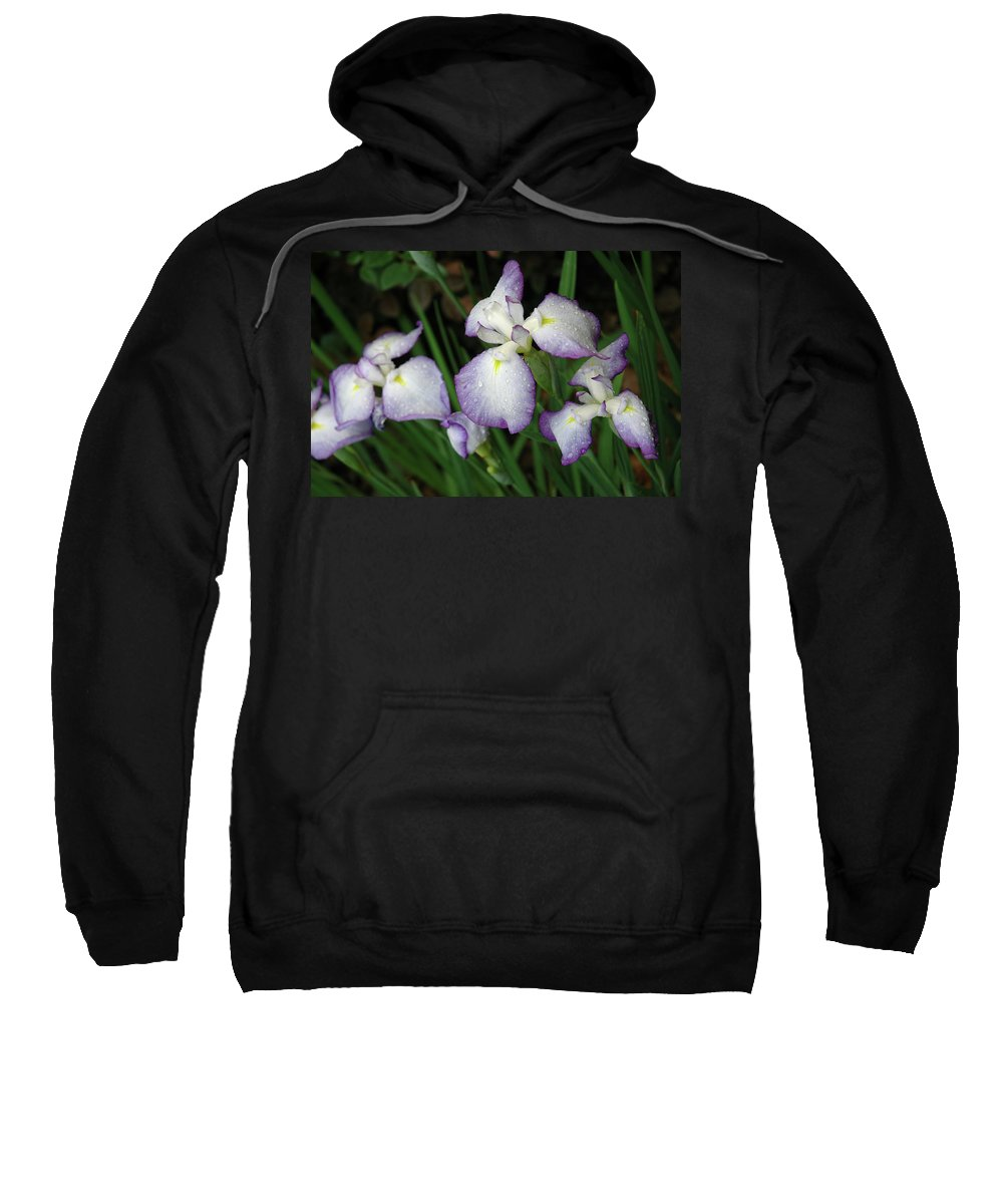 Iris Sweatshirt featuring the photograph Rhapsody by Marie Hicks