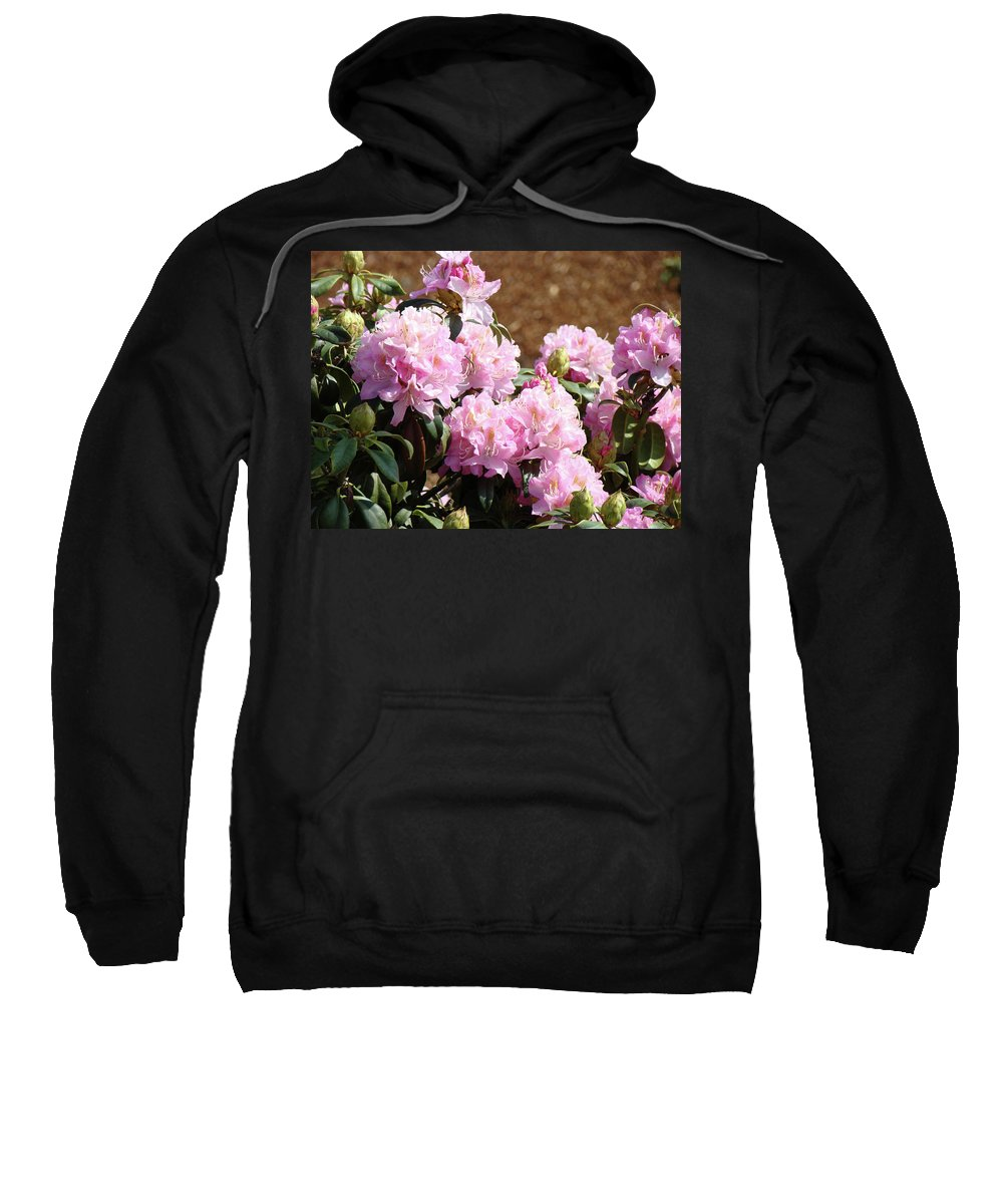 Rhodie Sweatshirt featuring the photograph Rhododendron Flower Garden Art Prints Canvas Pink Rhodies Baslee Troutman by Baslee Troutman