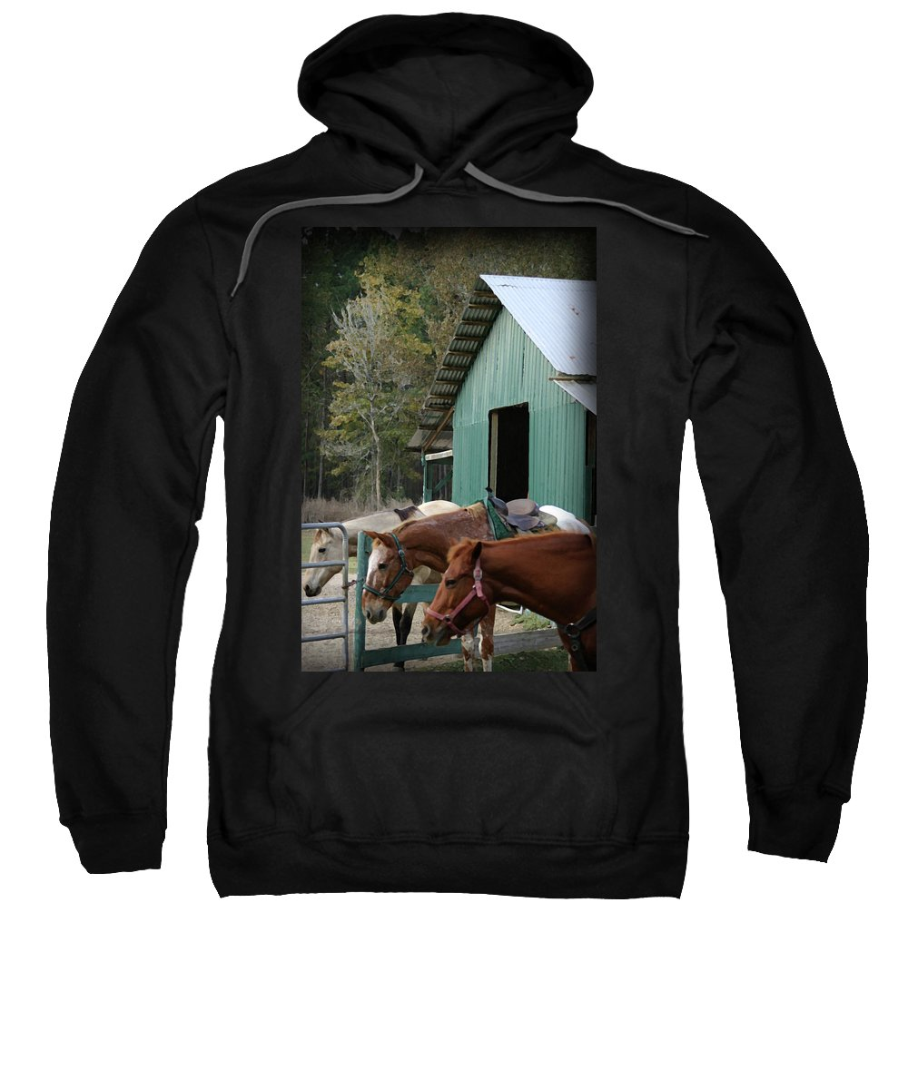 Horse Sweatshirt featuring the digital art Riding Horses by Kim Henderson