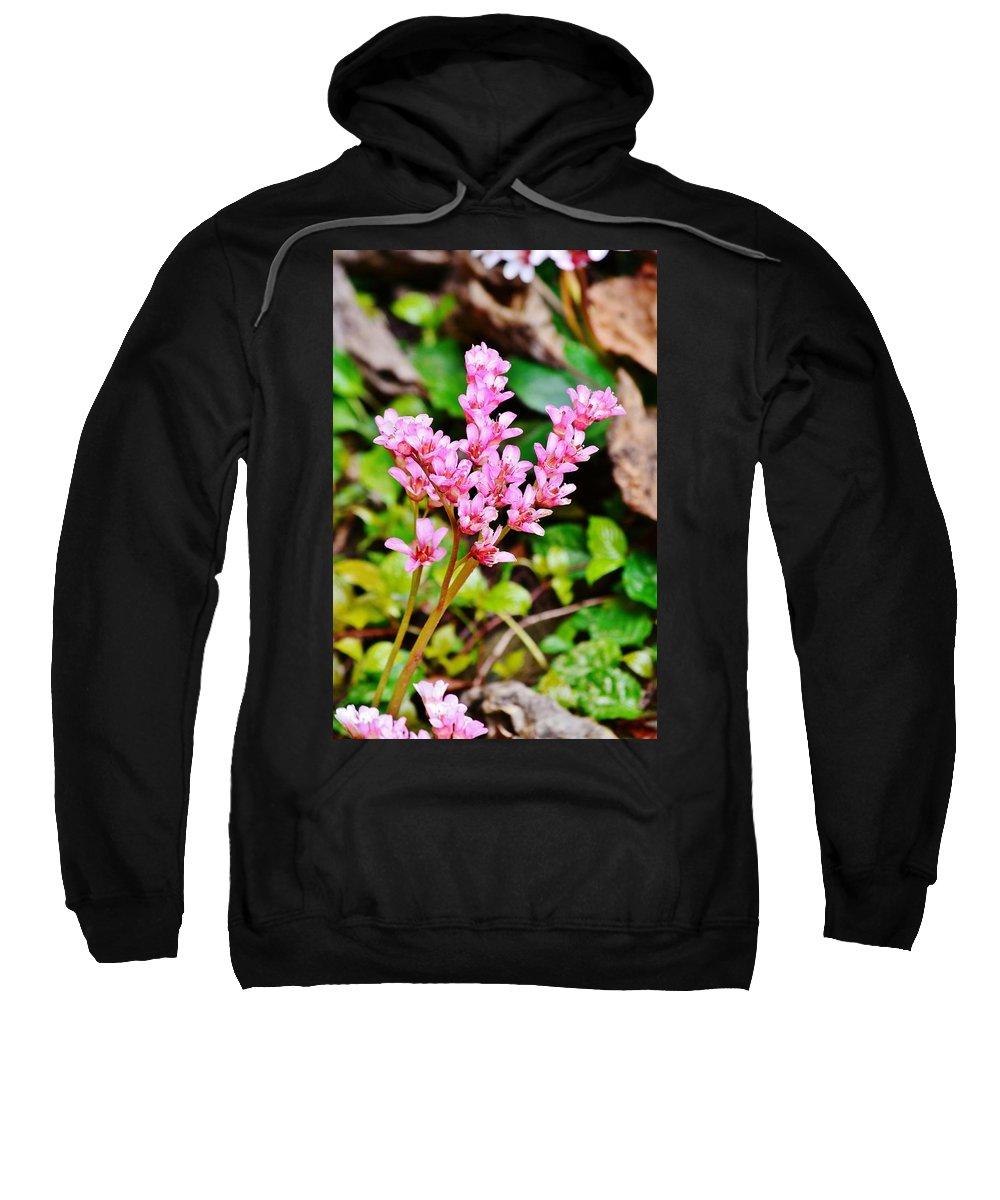 Flower Sweatshirt featuring the photograph Rock Splitter 20 by Kim Bemis