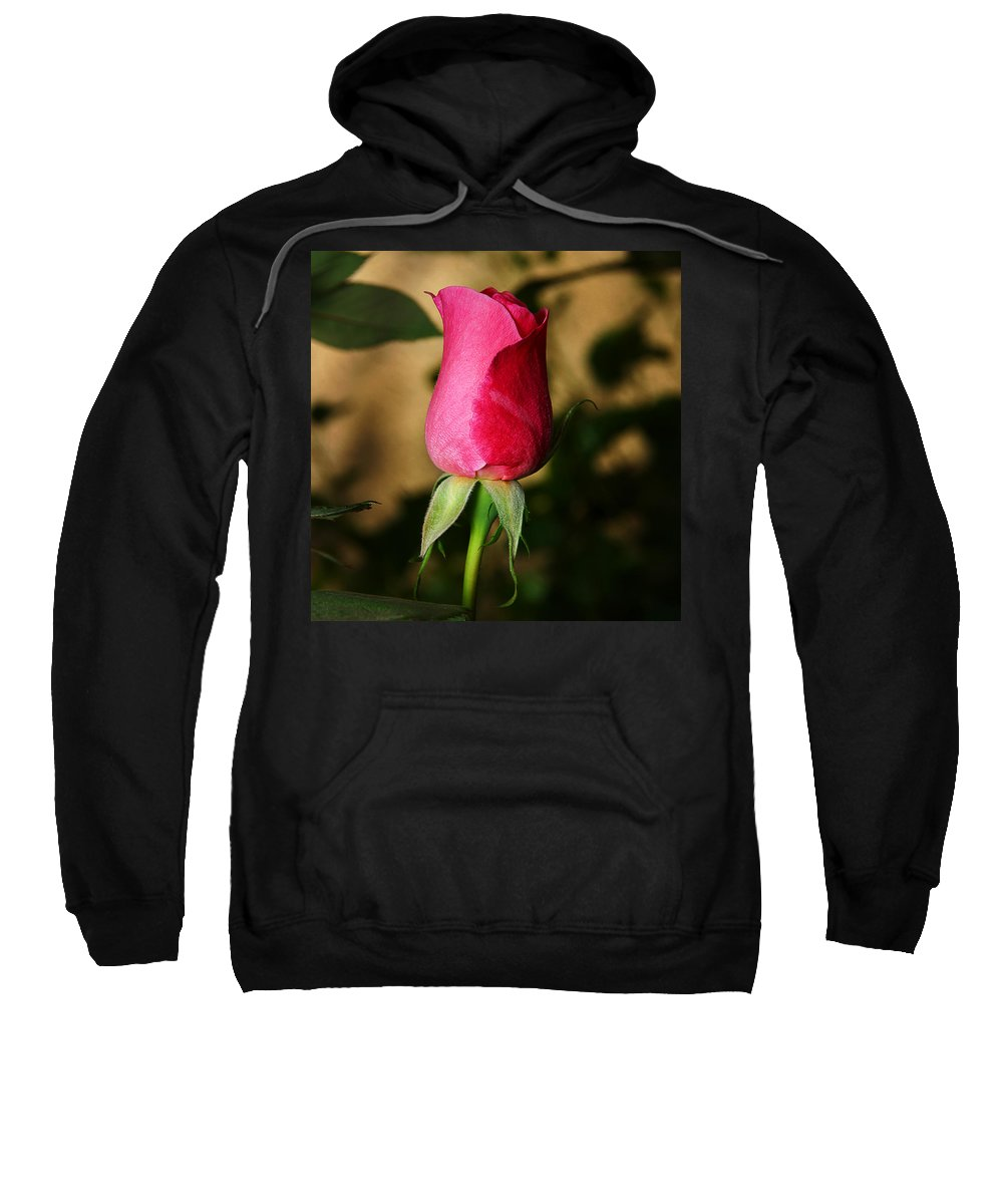 Rose Sweatshirt featuring the photograph Rose Bud by Anthony Jones