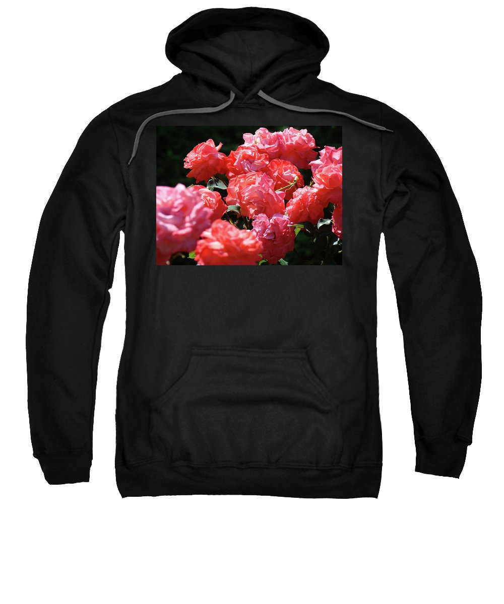 Rose Sweatshirt featuring the photograph Rose Garden Art Prints Pink Red Rose Flowers Baslee Troutman by Baslee Troutman