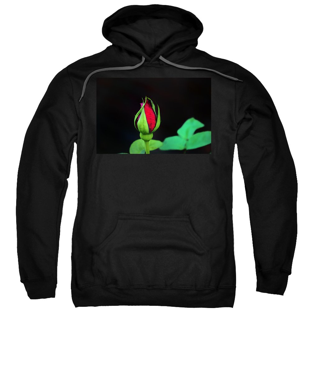 Rose Sweatshirt featuring the photograph Rosebud by Bill Cannon