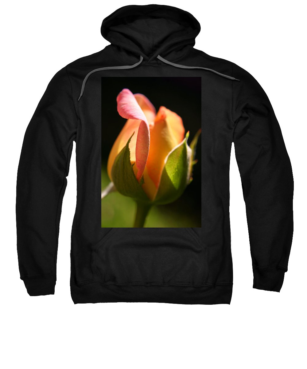 Rosebud Sweatshirt featuring the photograph Rosebud by Ralph A Ledergerber-Photography