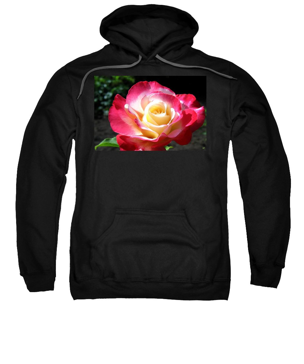 Rose Sweatshirt featuring the photograph Roses 7 by Will Borden