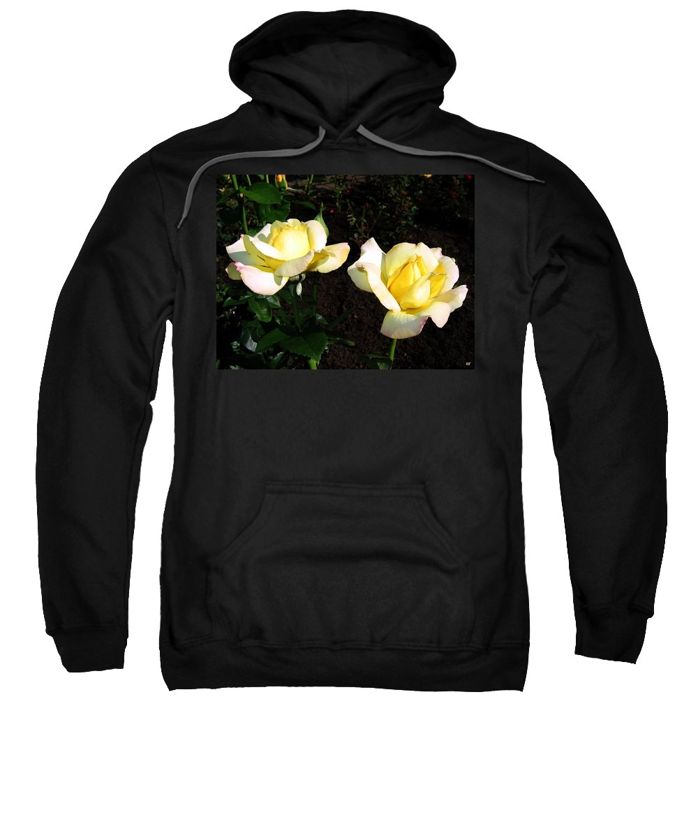 Roses Sweatshirt featuring the photograph Roses 8 by Will Borden