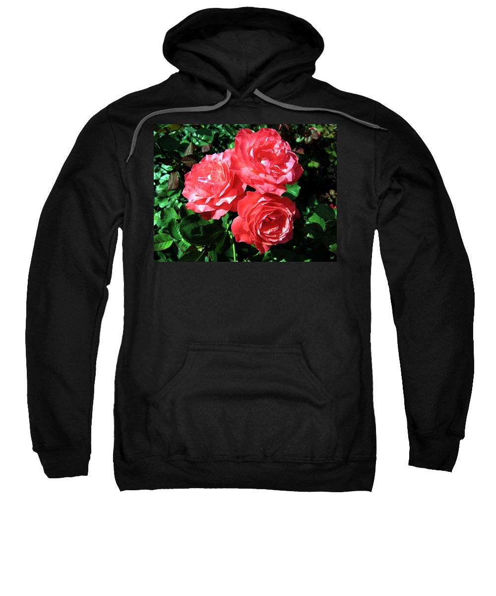 Roses Sweatshirt featuring the photograph Roses 9 by Will Borden