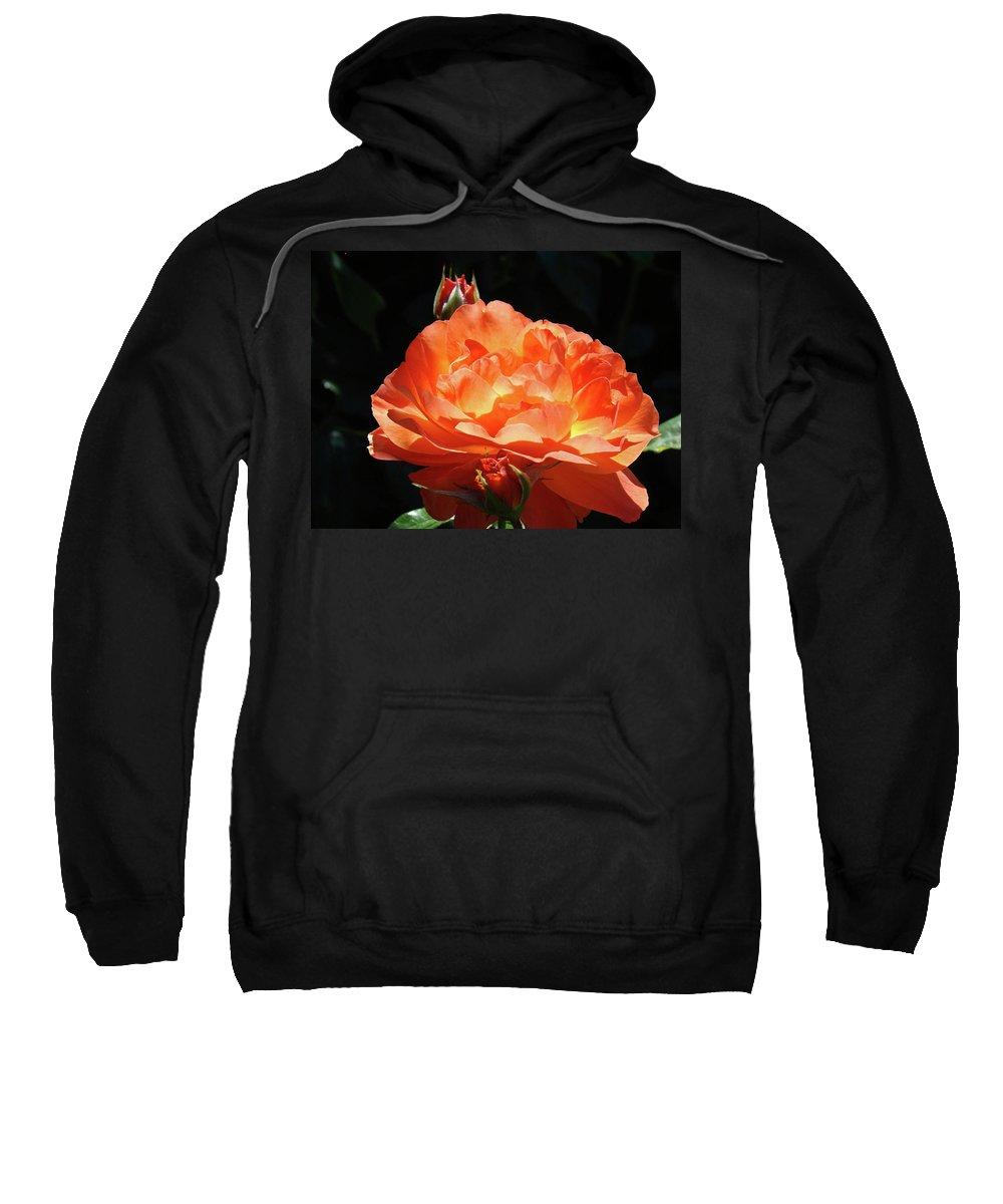 Rose Sweatshirt featuring the photograph Roses Orange Rose Flowers Rose Garden Art Baslee Troutman by Baslee Troutman