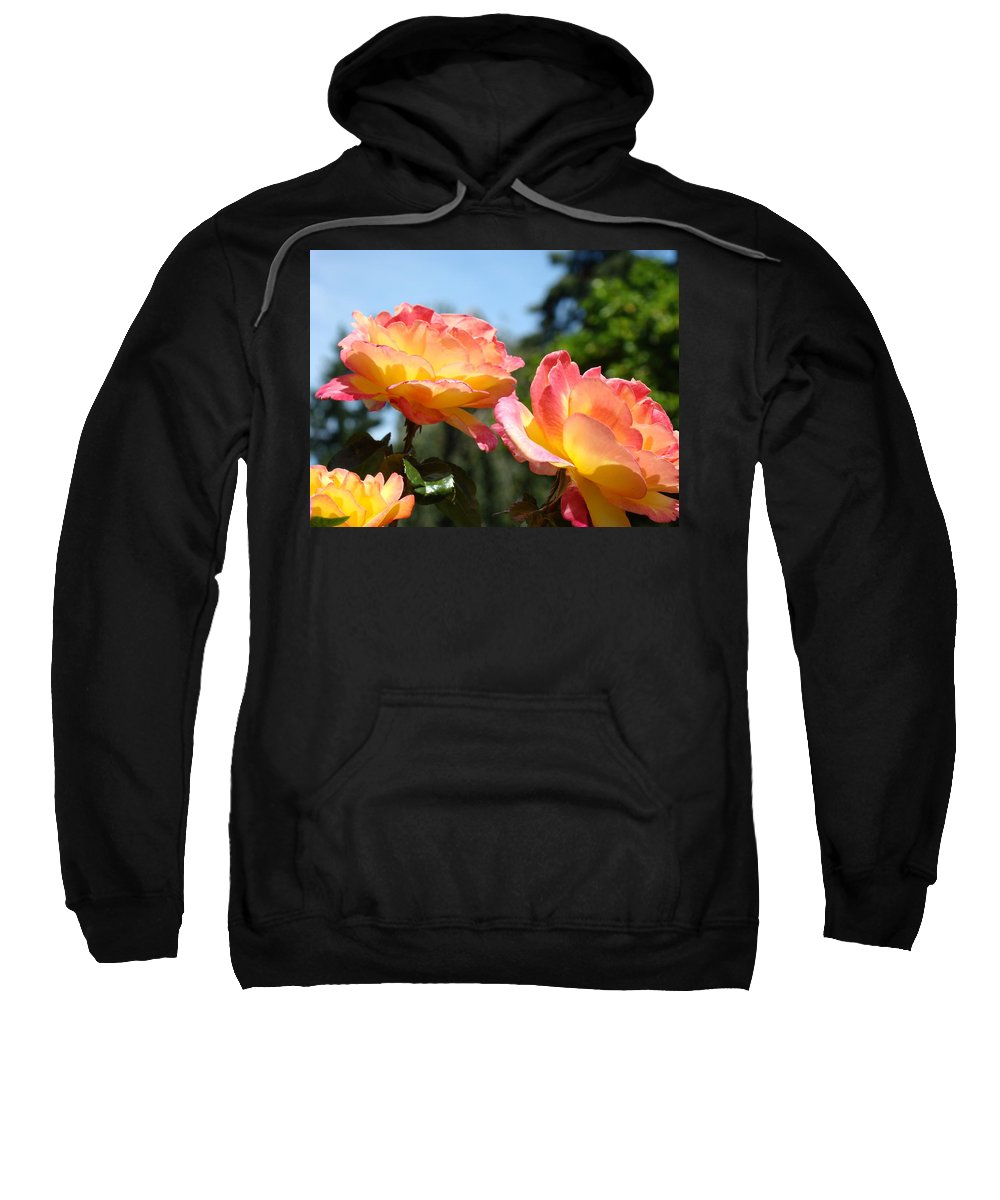 Rose Sweatshirt featuring the photograph Roses Yellow Roses Pink Summer Roses 4 Blue Sky Landscape Baslee Troutman by Baslee Troutman