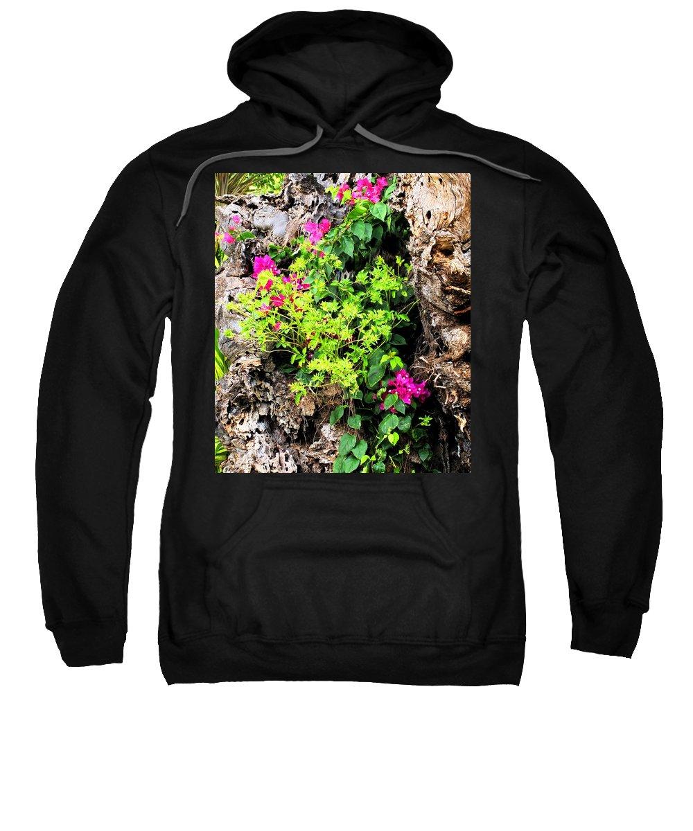 Flowers Sweatshirt featuring the photograph Rough Beauty by Ian MacDonald