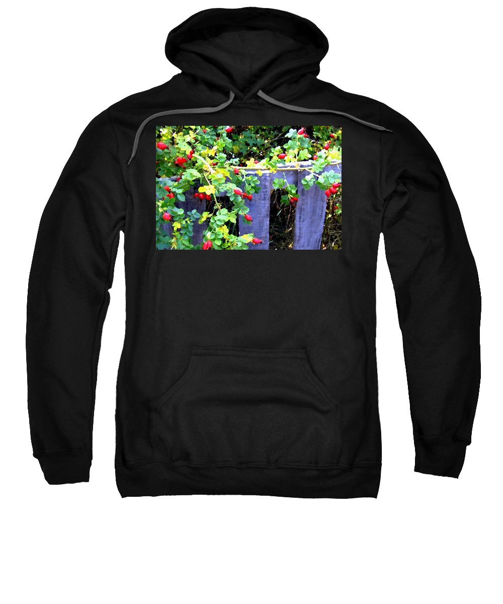 Rustic Fence Sweatshirt featuring the digital art Rustic Fence And Wild Rosehips by Will Borden