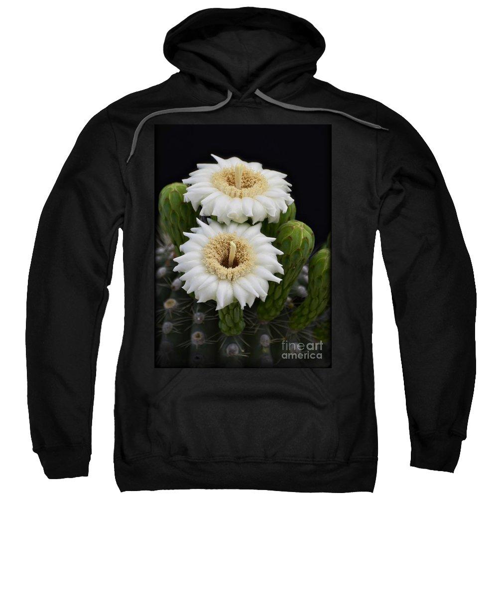 Arizona Sweatshirt featuring the photograph Saguaro Blooms II by Saija Lehtonen