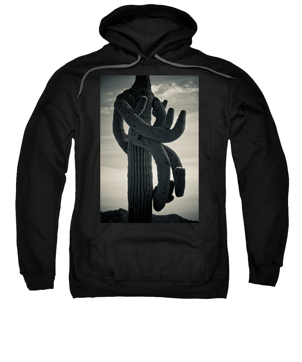 Saguaro Sweatshirt featuring the photograph Saguaro Cactus Armed And Twisted by James BO Insogna
