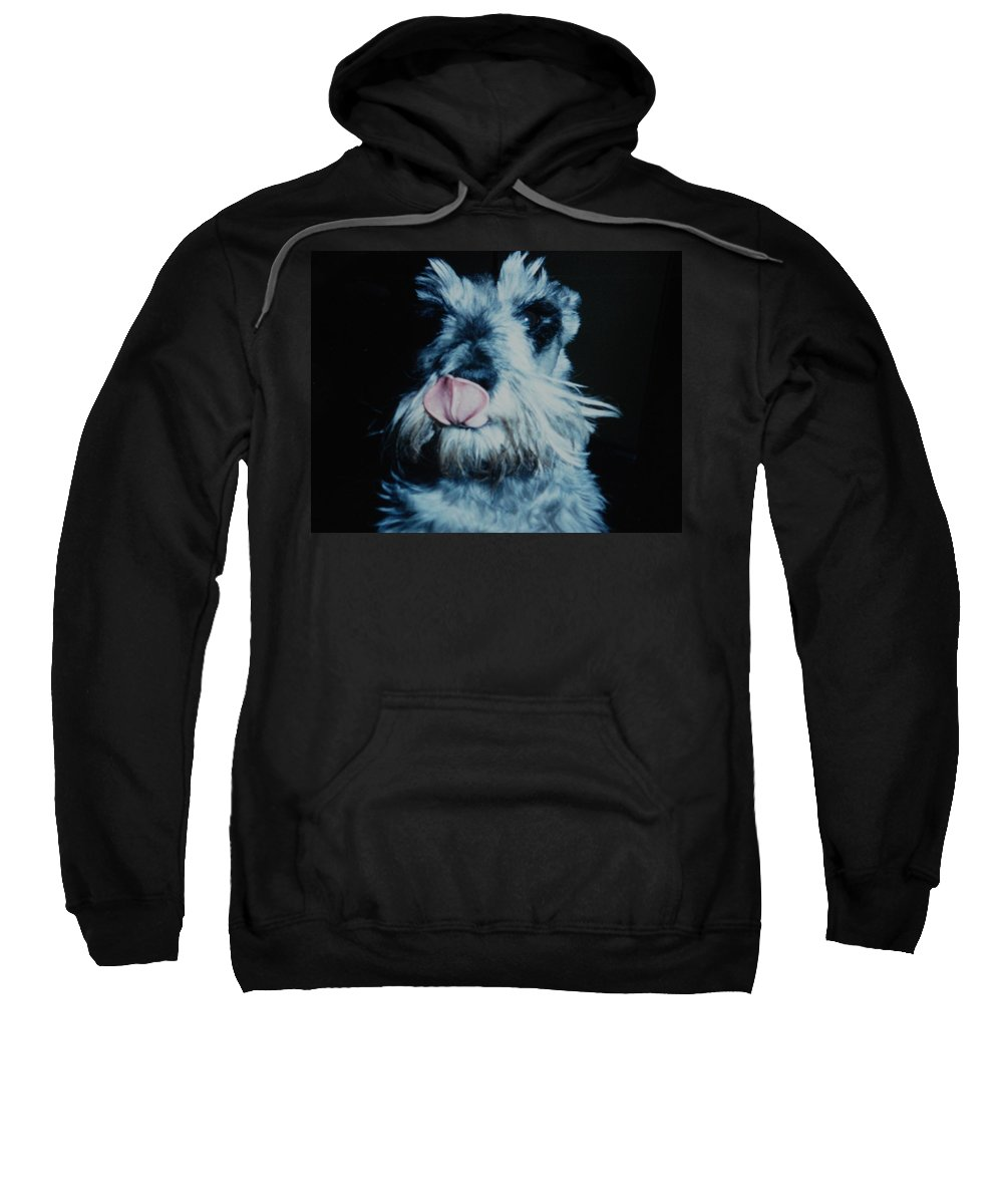 Dogs Sweatshirt featuring the photograph Sam The Fat Cow by Rob Hans