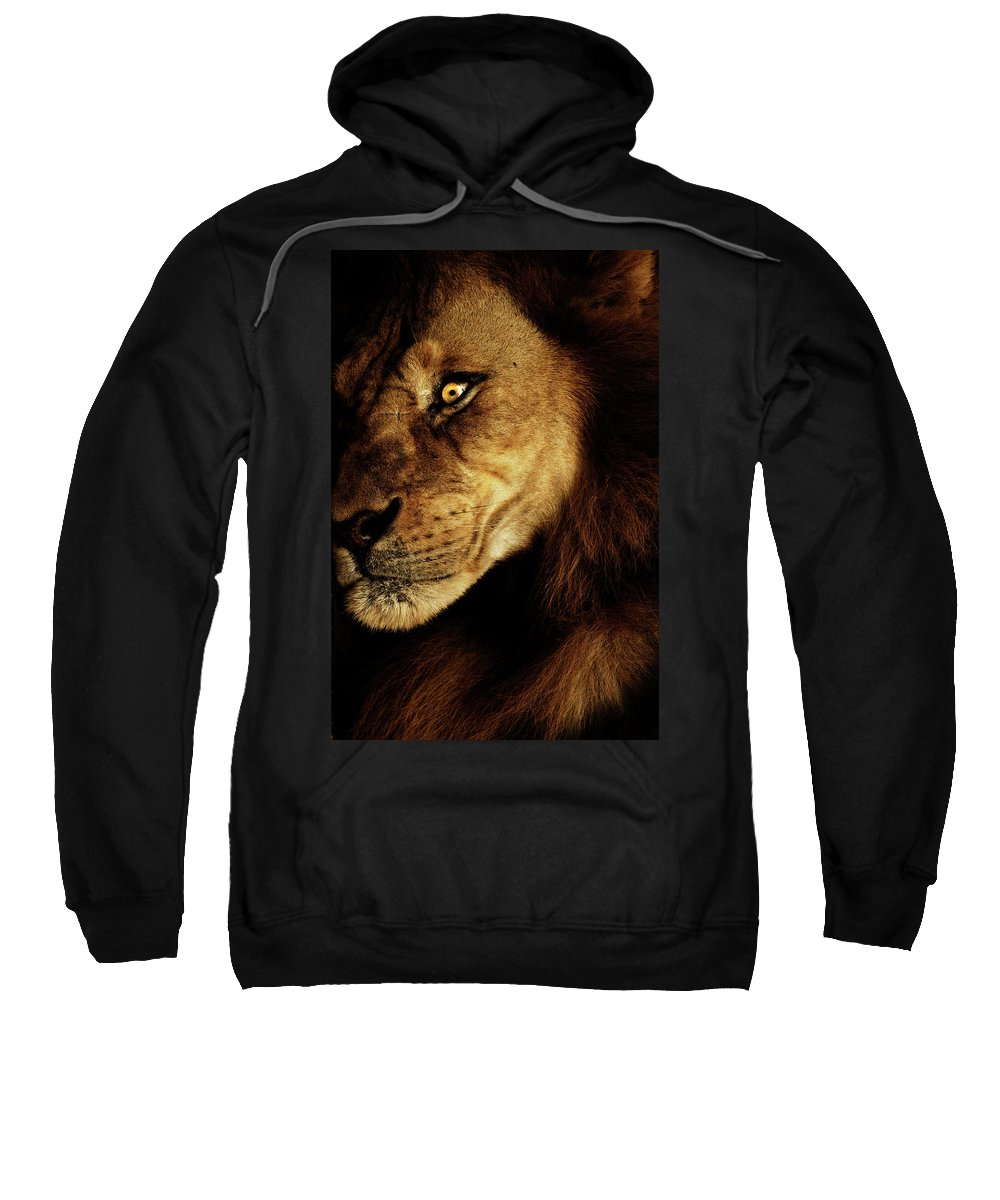 Lion Sweatshirt featuring the photograph Savage by Andrew Paranavitana