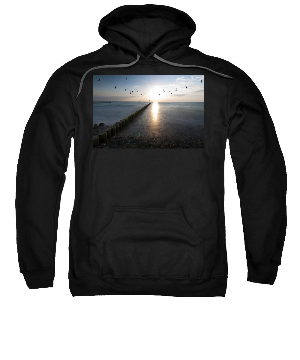 �stsee Sweatshirt featuring the photograph Sea Birds Sunset. by Nathan Wright