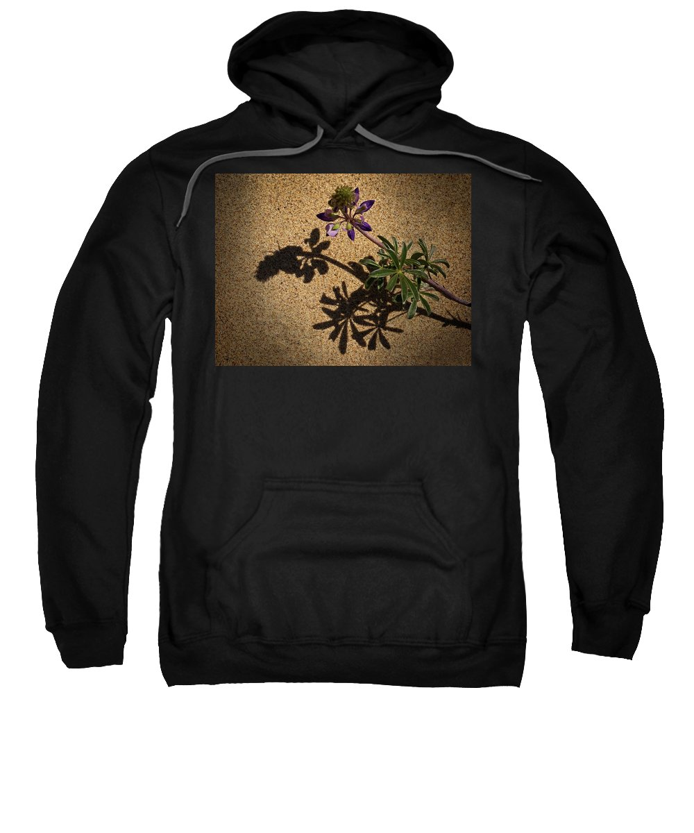 Sea Shore Lupine Sweatshirt featuring the photograph Sea Shore Lupine - 365-60 by Inge Riis McDonald