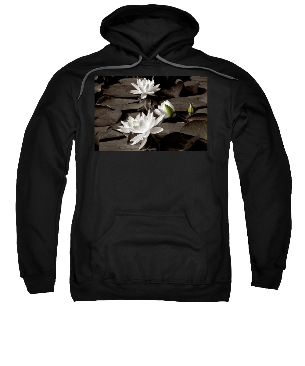 See Roses Sweatshirt featuring the photograph See Roses In The Pond by Wolfgang Stocker