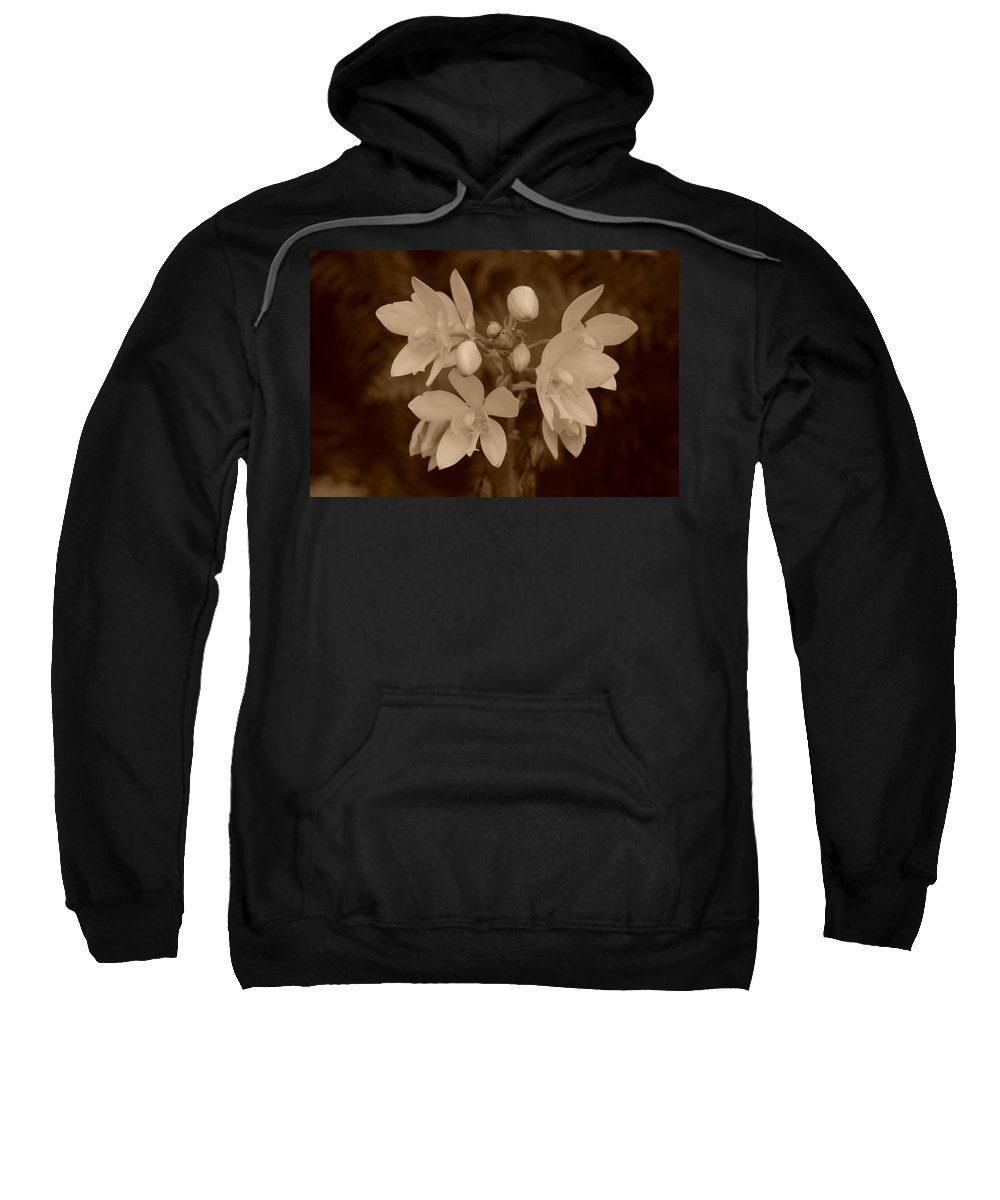 Macro Sweatshirt featuring the photograph Sepia Flower by Rob Hans