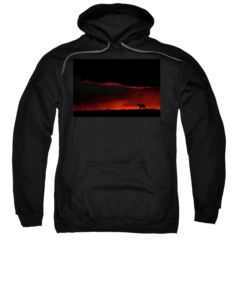 Horse Sweatshirt featuring the digital art Set Sun Silhouetting Horse On Saskatchewan Ridge by Mark Duffy