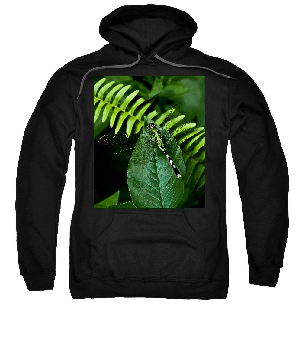 Dragonfly Sweatshirt featuring the digital art Shades Of Green by DigiArt Diaries by Vicky B Fuller