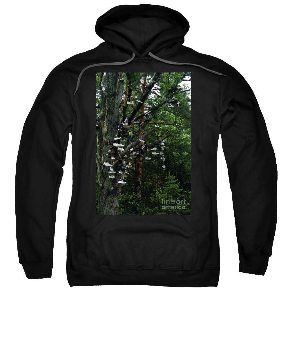 Amusement Sweatshirt featuring the photograph Shoe Tree by Linda Shafer