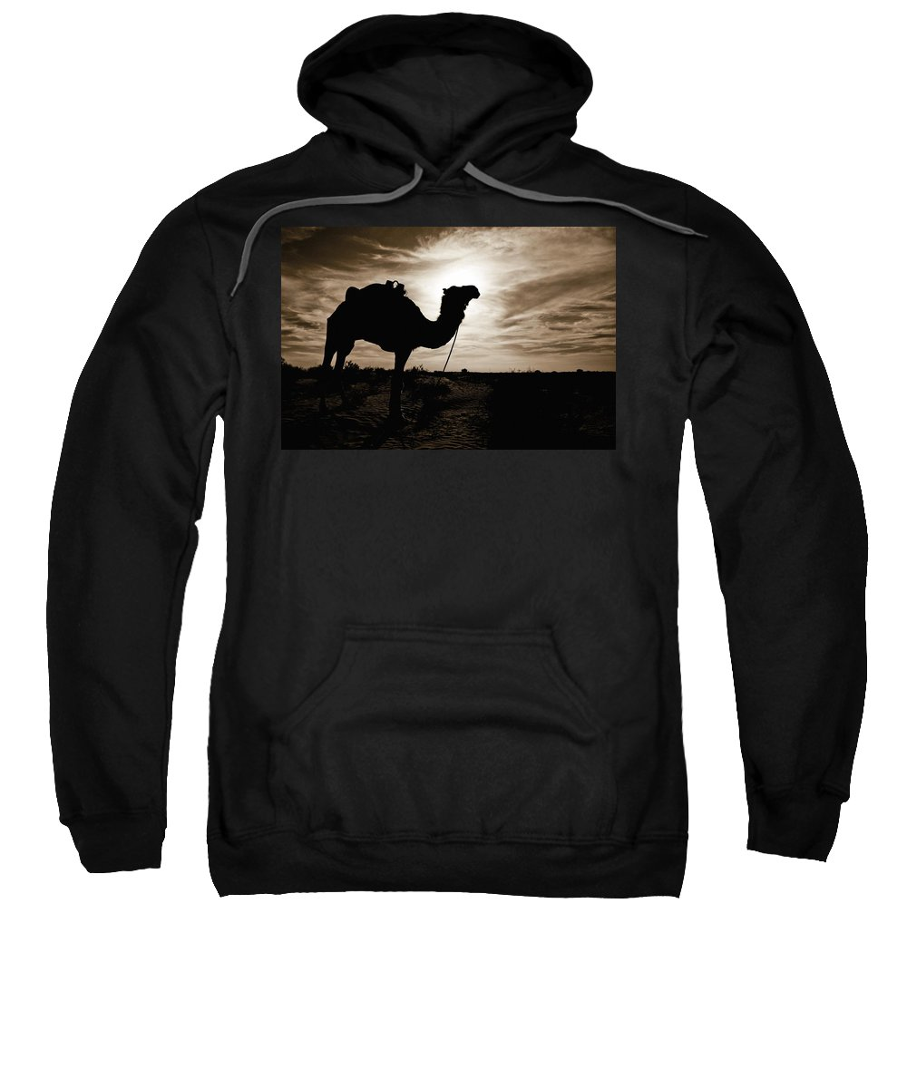 African Sweatshirt featuring the photograph Silhouetted Camel, Sahara Desert, Douz by David DuChemin