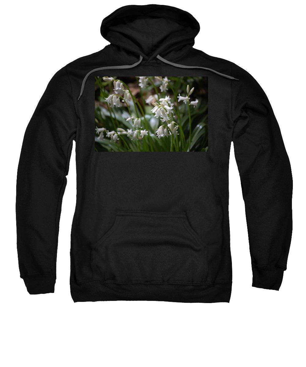Landscape Sweatshirt featuring the photograph Silver Bells by David Lane