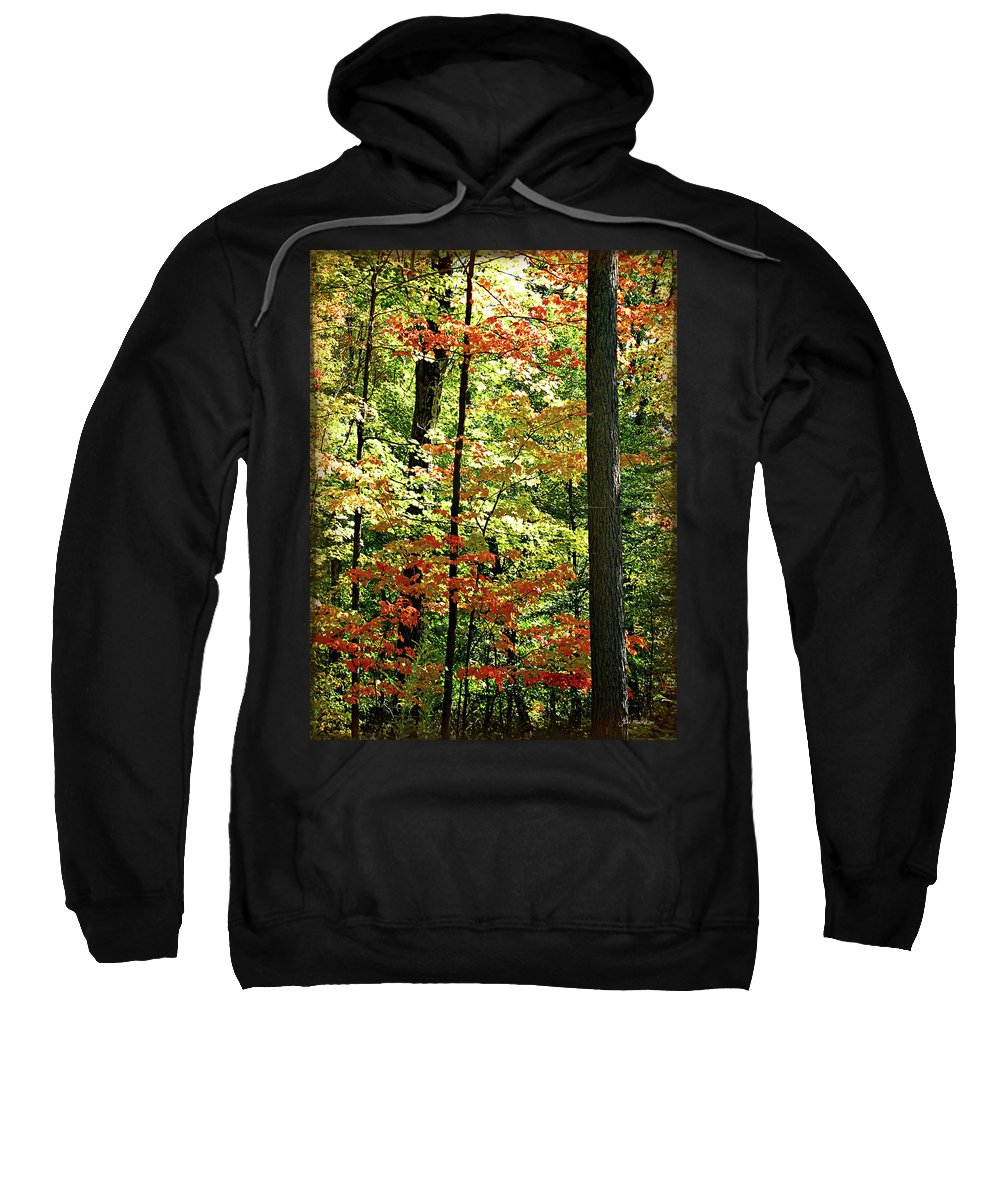 Autumn Sweatshirt featuring the digital art Simply Autumn by Joan Minchak