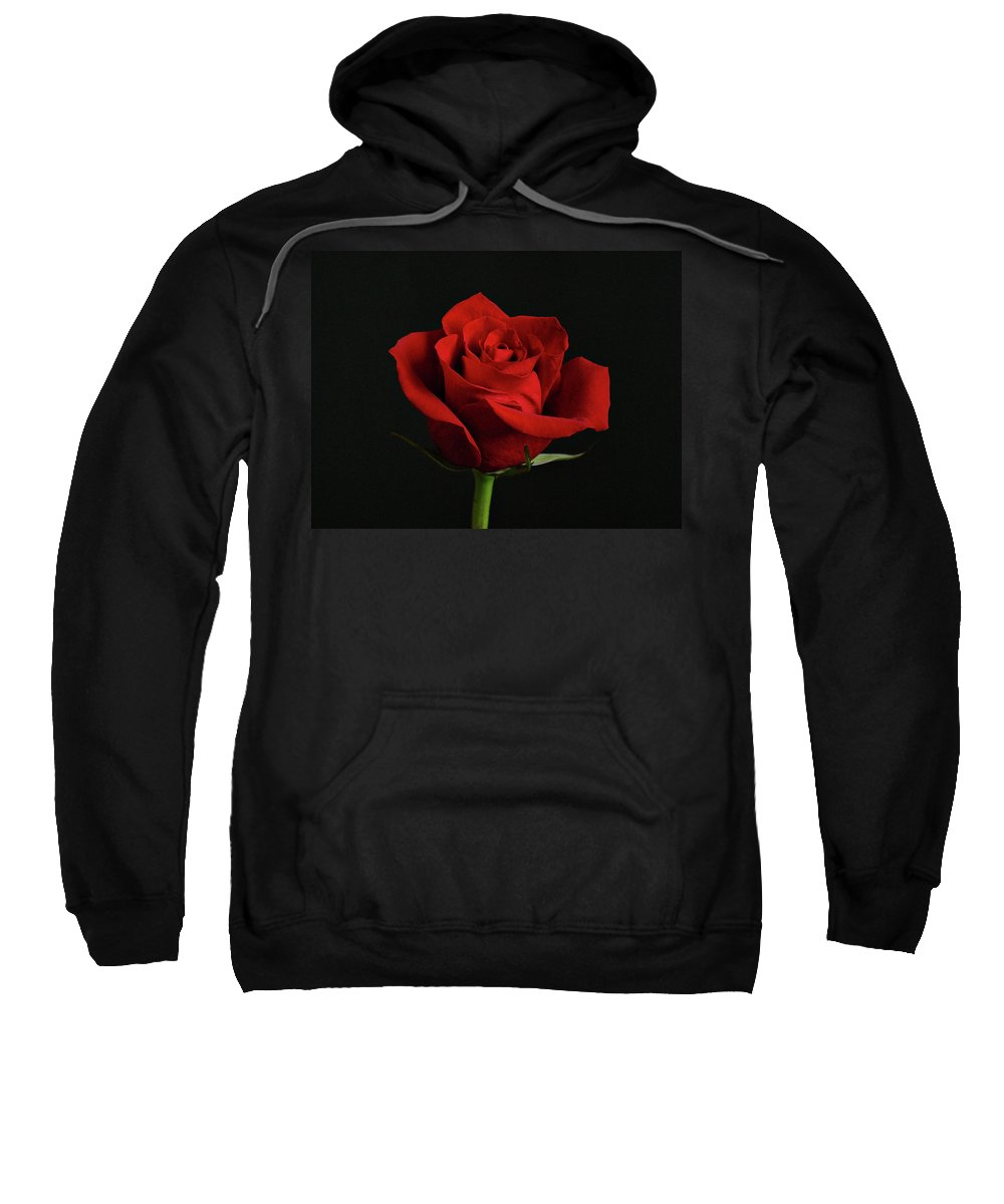 Flower Sweatshirt featuring the photograph Simply Red Rose by Sandy Keeton