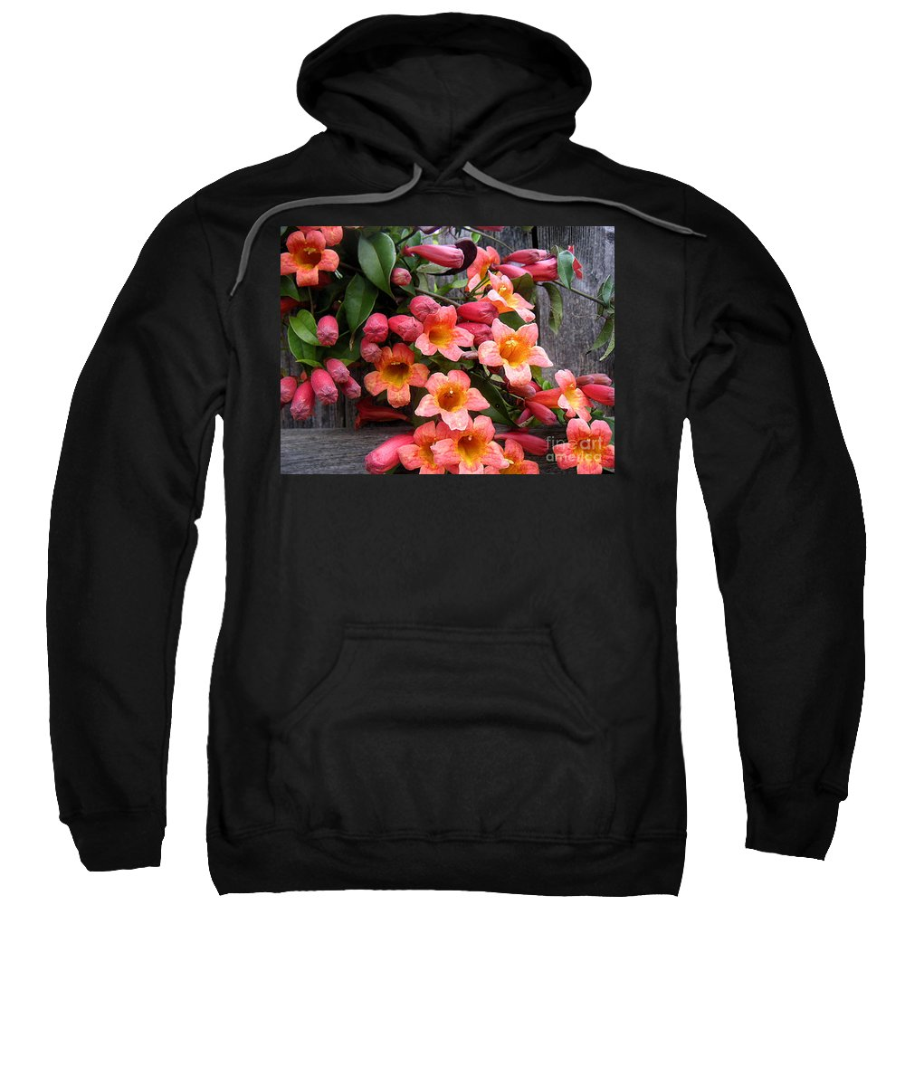 Nature Sweatshirt featuring the photograph Singing Corals by Lucyna A M Green