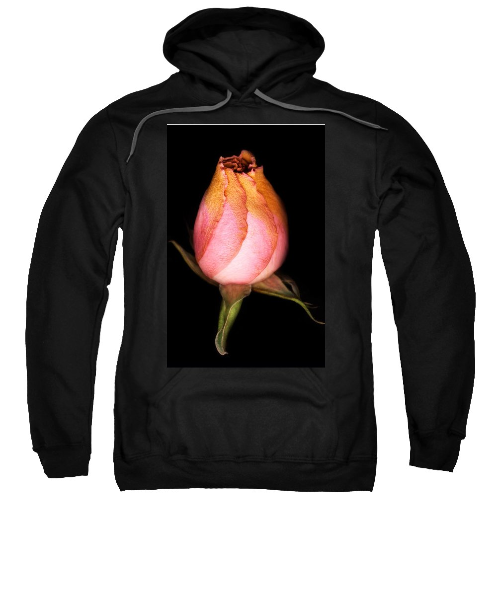 Rose Sweatshirt featuring the photograph single Rose by Marilyn Hunt