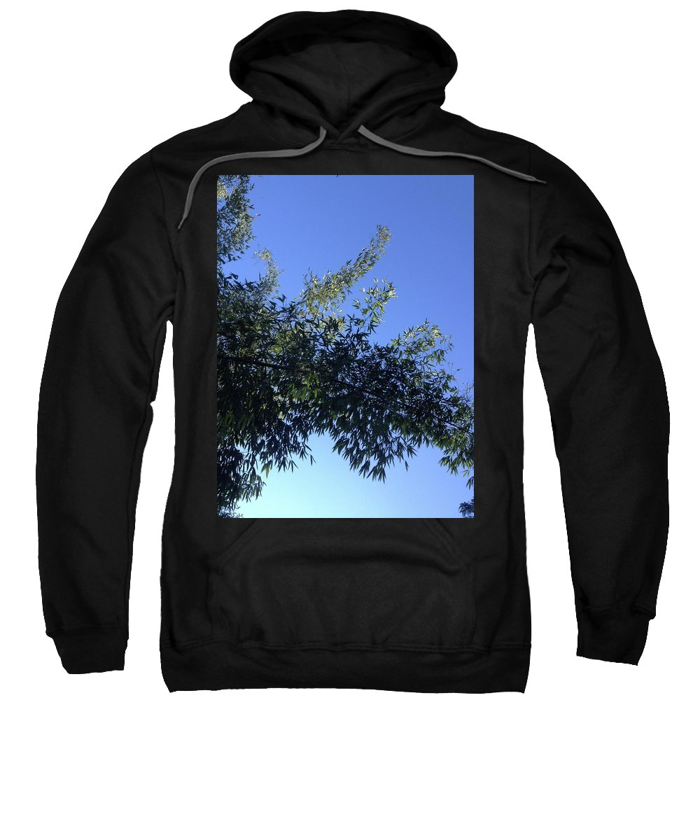 Bamboo Sweatshirt featuring the photograph Skies Grass by Connor Torrence