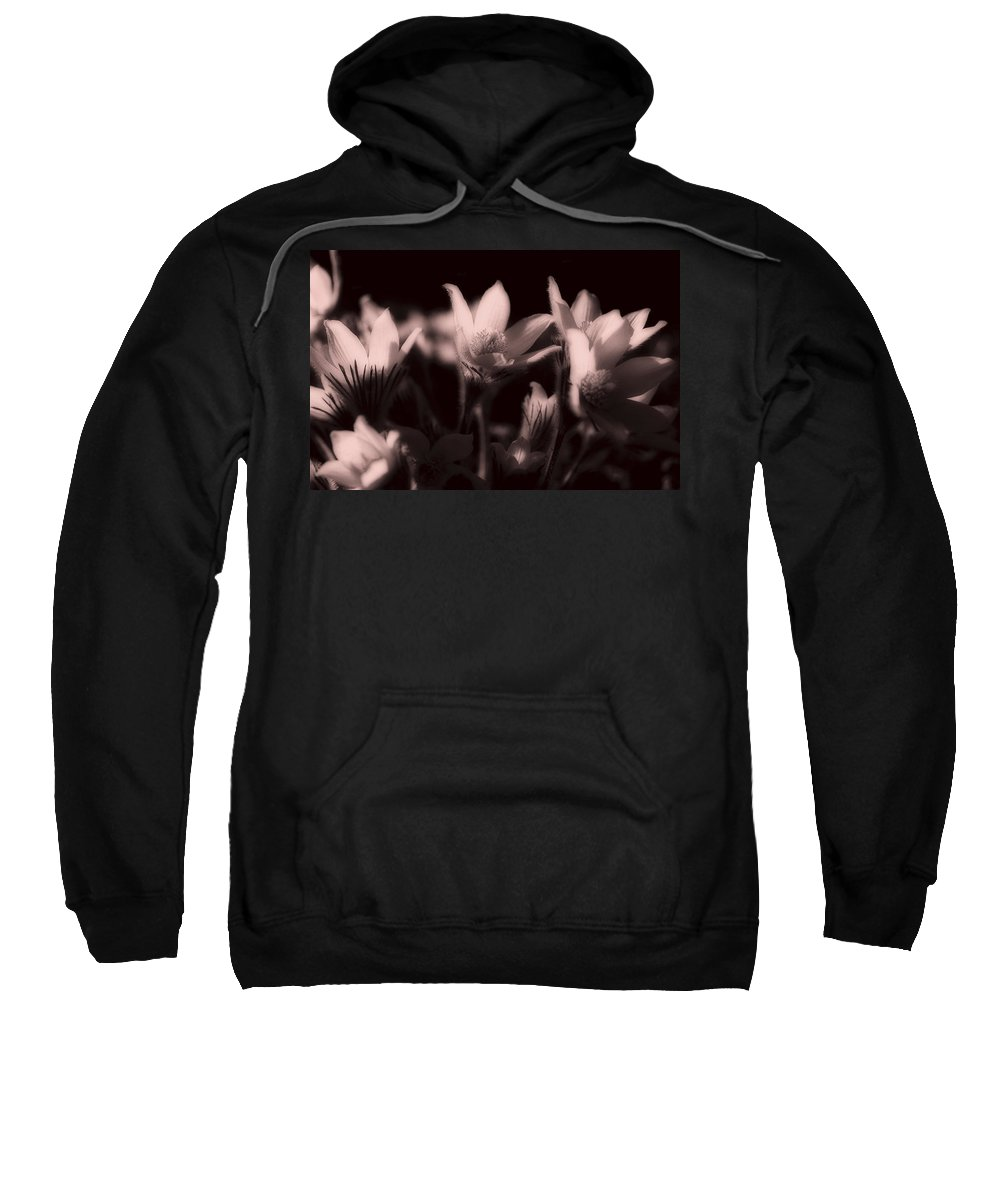 Flowers Sweatshirt featuring the photograph Sleepy Flowers 2 by Marilyn Hunt