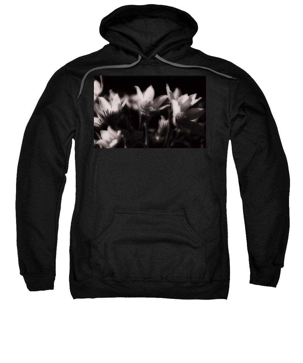 Flowers Sweatshirt featuring the photograph Sleepy Flowers by Marilyn Hunt