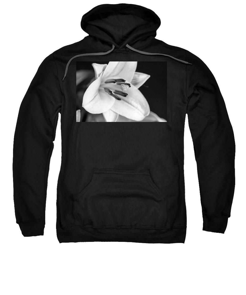 Macro Sweatshirt featuring the photograph Small Lily-2 Bw by Jennifer Wick
