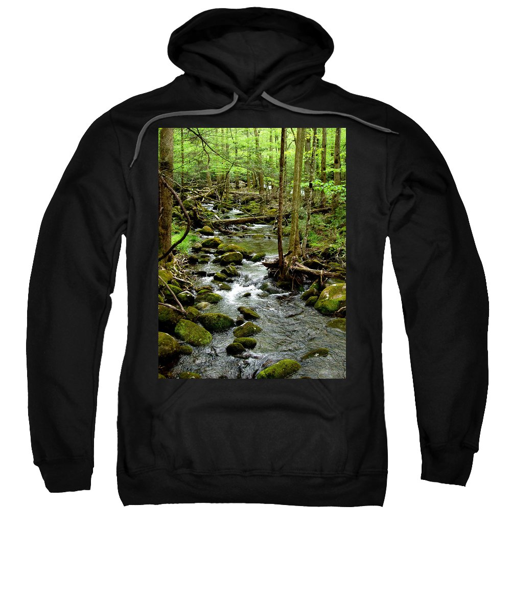 River Sweatshirt featuring the photograph Smoky Mountain Stream 2 by Nancy Mueller