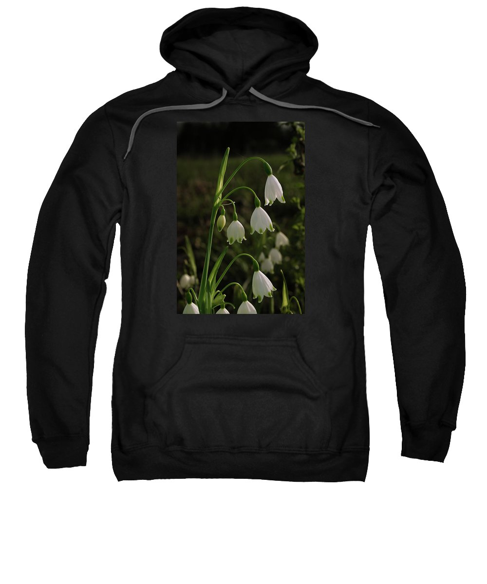 Snowbell Sweatshirt featuring the photograph Snowbells by Grant Groberg