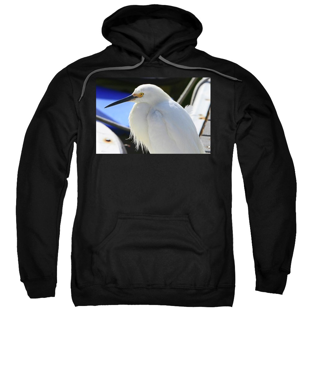 Egret Sweatshirt featuring the photograph Snowy Profile by Shoal Hollingsworth