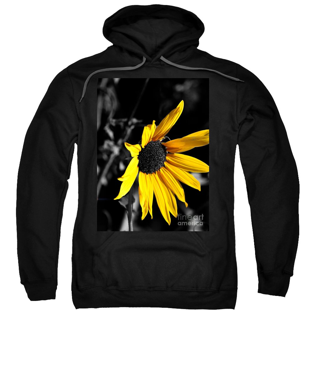 Clay Sweatshirt featuring the photograph Soaking Up The Yellow Sunshine by Clayton Bruster
